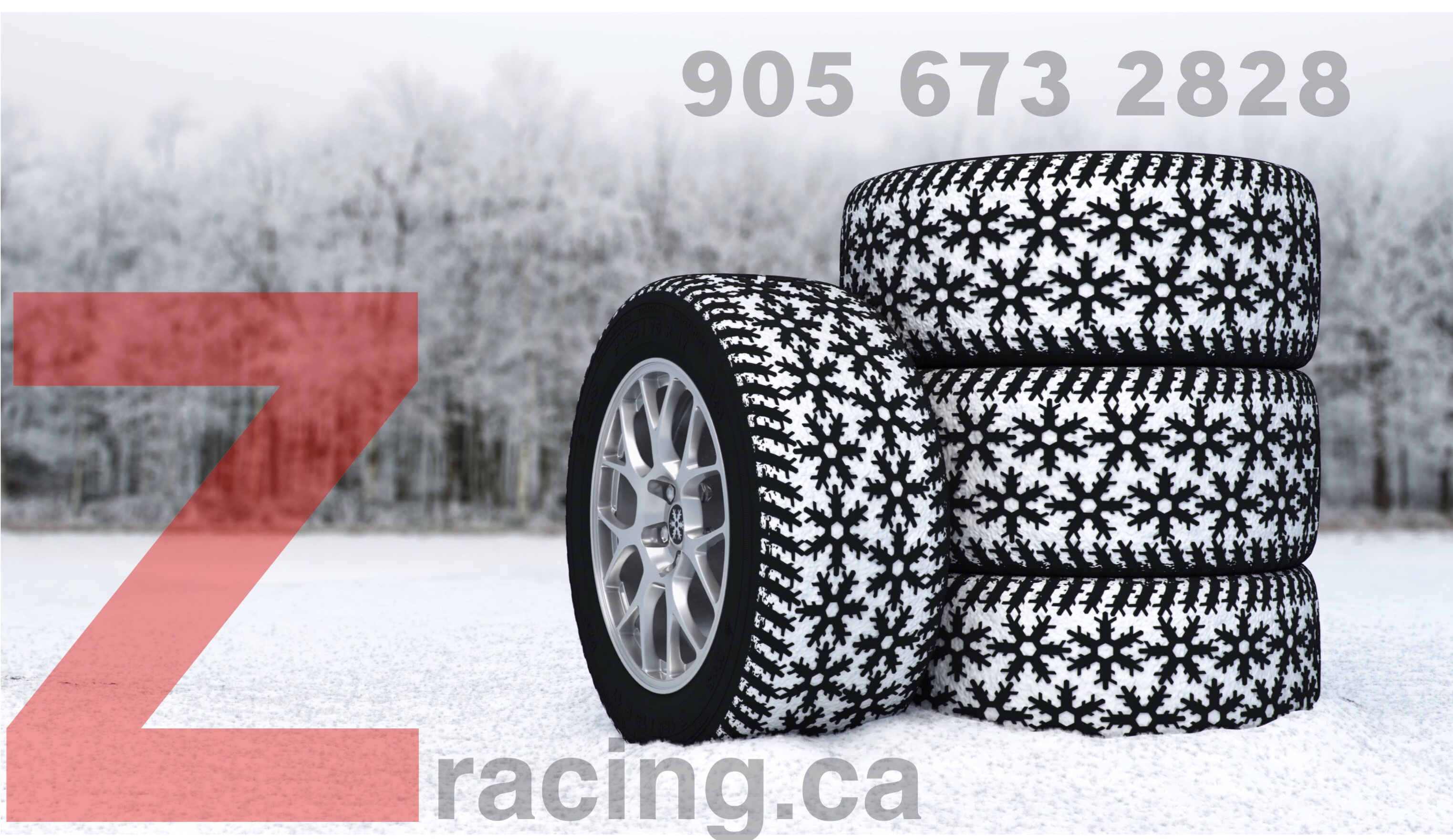 ACURA TLX Winter Tire Steel Wheel Package Call 905 673